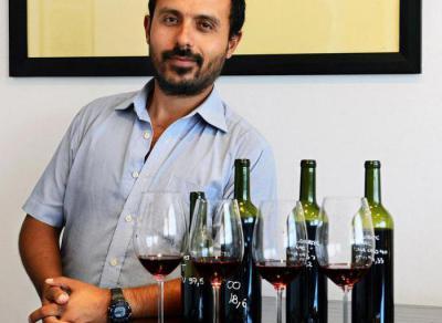 Аргентинское вино мальбек: описание, состав и отзывы