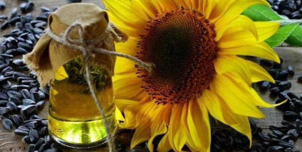 Высокоолеиновое масло: преимущества перед обычным, польза и вред, отзывы