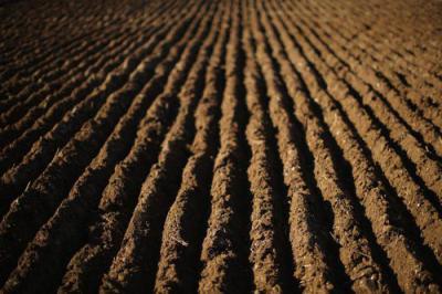 В чем заключаются основные свойства почвы
