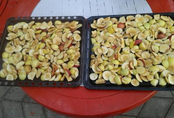 Сушка яблок в домашних условиях - как сушить яблоки в духовке или на солнце