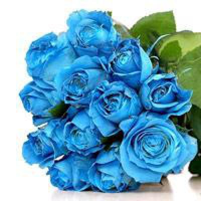 Символика цветов: что означает цвет розы