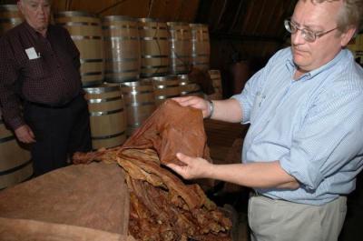 Как выполняется ферментация табака в домашних условиях