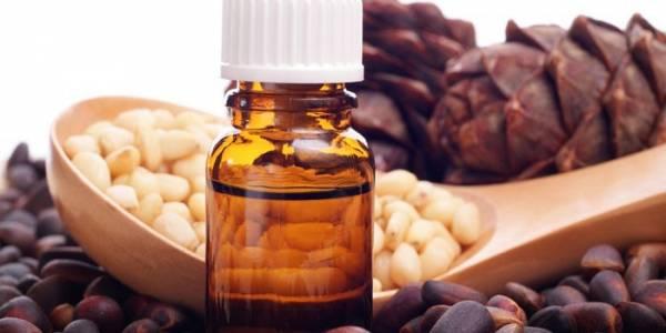 Кедровое масло: лечебные свойства и применение