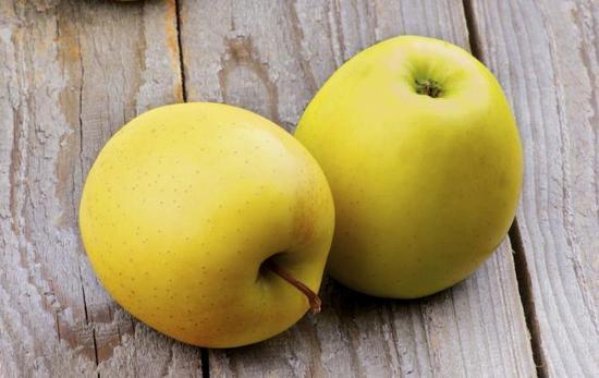 Яблоки: польза и вред для организма, противопоказания