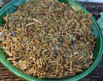 Трава мокрица: лечебные свойства и противопоказания