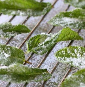 Как заморозить мяту на зиму в домашних условиях