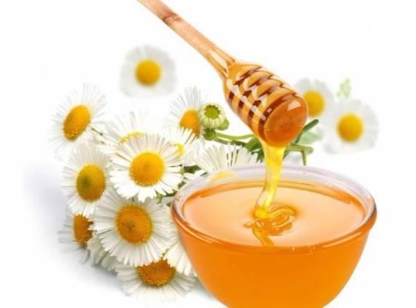 Мёд из разнотравья: все о мёде, целебные свойства, противопоказания