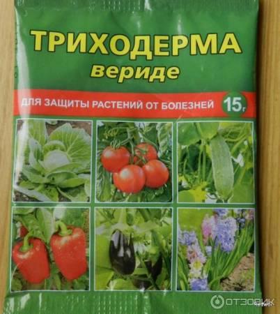 Отзыв: Биопрепарат полезных почвенных грибов Ваше хозяйство Триходерма верите - хорошее профилактическое средство от патогенных грибов для варианта не болеть в отличчии от лечиться
