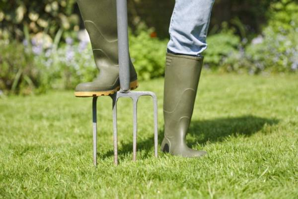Уход за газоном осенью и подготовка к зиме