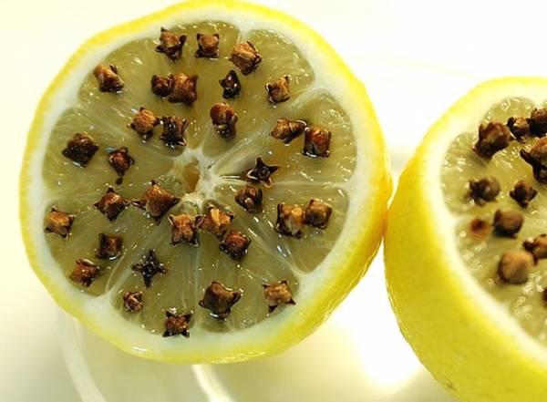 Совет 1: Народные средства от комаров: как отпугнуть насекомых