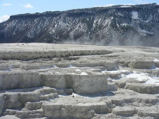 Калийная соль: описание, добыча, использование