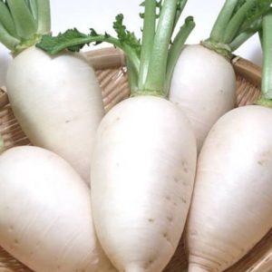 Белая редька - калорийность и состав