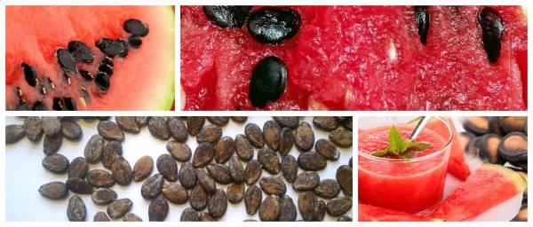 Польза и опасность арбузных семян для мужчин и женщих