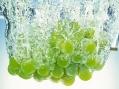 Виорика сорт винограда
