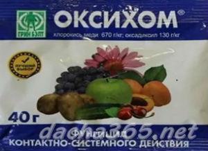 Как бороться с фитофторой на картофеле: эффективные химические и народные средства, устойчивые к фитофторозу сорта
