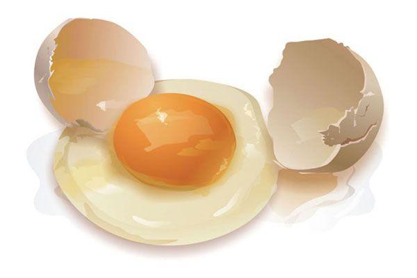 Можно ли есть гусиные яйца и как их использовать