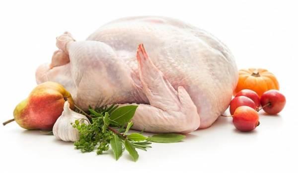Все о пользе и вреде мяса индюшатины