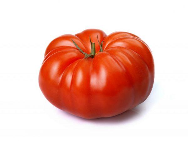 Описание и характеристика томатов Король Ранних