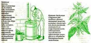 Как сделать зеленое удобрение на основе крапивы и травы