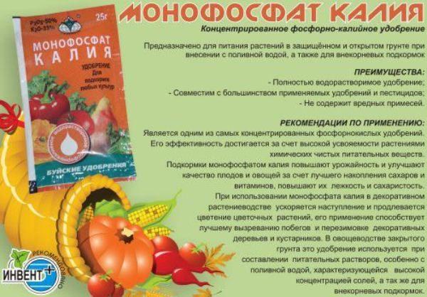 Инструкция по применению монофосфата калия