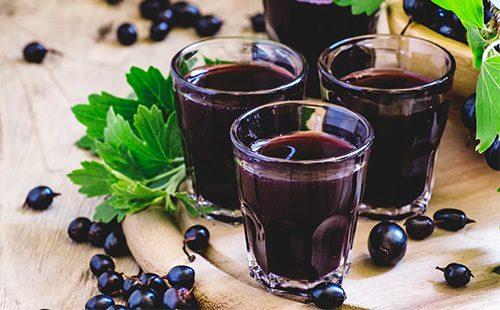 Применение настойки черной смородины: полезное лекарство или напиток для застолья