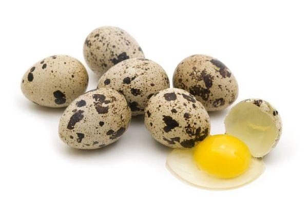 Сколько весит одно перепелиное яйцо и от чего зависит масса