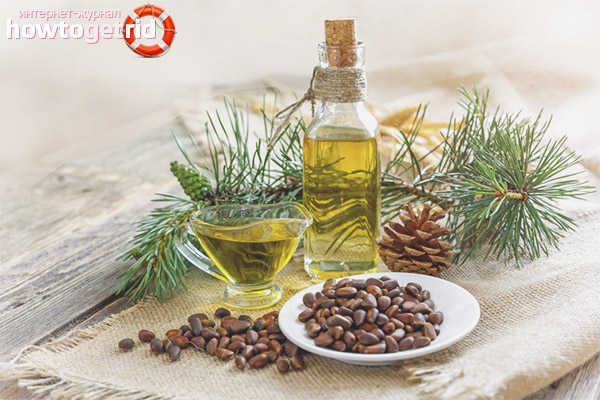 Масло кедрового ореха - польза и вред для здоровья