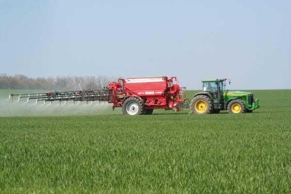 Подкормка озимой пшеницы: чем, когда и как
