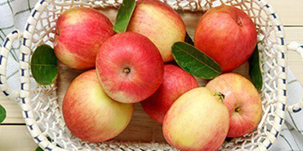 Яблоки польза и вред для организма